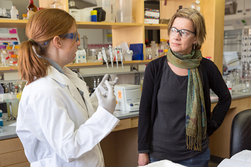 Professor Helen Blackwell talks with a graduate student researcher in her chemistry laboratories