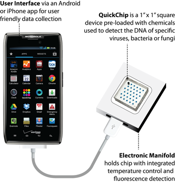 QuickChip diagram