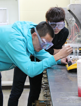 Undergraduates in Chemistry 109 work with cobalt and copper complexes