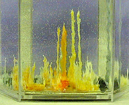 Image Result For Crystal Garden